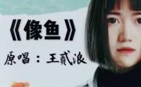 《像鱼》王贰浪 高品质 【MP3/flac】