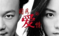 《因为爱情》陈奕迅、王菲 高品质 【MP3/flac】