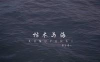 《枯木与海》零柒零一 高品质 【mp3/flac】